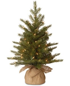 National-Tree-Feel-Real-Nordic-Spruce-Tree-in-Burlap-with-50-Clear-Lights-2-Feet-0